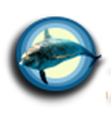 Dolphin Communication Project Logo